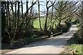 SX2971 : Road across the valley bottom near Caradon Town Farm by Tony Atkin