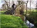 TL1292 : Billing Brook from Access Land by Ken Brockway