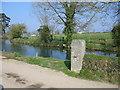 SX0778 : Duckpond at Tregawn Farm by Phil Williams