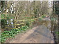 TL9891 : High water level on Bradcar Road by Ian Robertson