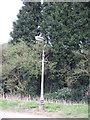 TL1737 : Street lamp near Old manor Farm by Jeff Tomlinson