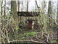 SP7310 : Curiosity in woods near Cuddington by Andy Gryce