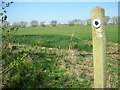 SP9559 : Bridleway joins Yelnow Lane from Podington Airfield by Will Lovell