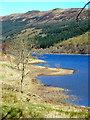 NN5810 : Loch Lubnaig Shoreline by Iain Thompson