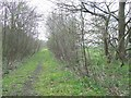 SJ9412 : Course of Old Railway, Pillaton, Staffordshire by Roger  Kidd