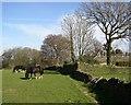 SE1123 : Footpath past Holly Royd, off Church Lane, Southowram by Humphrey Bolton