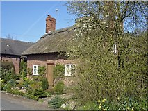 SJ6778 : Cottage at George's Lane Farm by Mike Harris