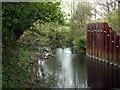 SE3109 : The River Dearne by John Fielding