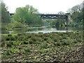 SP0444 : Railway Bridge over the River Avon by David Luther Thomas