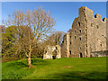 SS4986 : Oxwich Castle in April by Pam Brophy