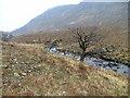 NM9160 : River Tarbert by Dave Fergusson