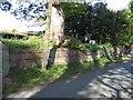 SJ4555 : Graveyard Wall at Coddington St Mary by John S Turner