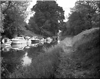 SU1561 : Kennet and Avon Canal west of Pewsey by Dr Neil Clifton