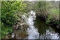 SX3577 : The River Inny from Bealsmill Bridge by Tony Atkin