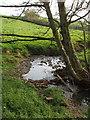 SS2303 : Stream near Marhamchurch by David Hawgood