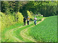 ST7651 : Walkers on the Macmillan Way approaching Buckland Dinham, Somerset by Brian Robert Marshall