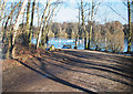 SJ7371 : Long winter shadows on Shakerley Mere by Pauline E