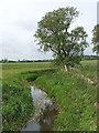 SP8216 : River Thame north of Aylesbury by David Hawgood