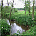SJ7603 : The River Worfe near Ryton, Shropshire by Roger  Kidd