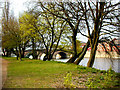 SO8454 : Bridge over the River Severn at Worcester by Chris Gunns