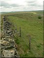 SD7423 : The edge of Haslingden Moor by Rich Tea