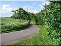 TM2561 : View north towards Hillhouse Farm by Trevor Alder