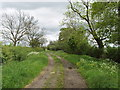SP8126 : Bridleway with grass verges, near Swanbourne by David Hawgood