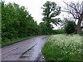 TL2665 : Barnfield Lane westwards by Andrew Tatlow