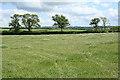 SX3589 : St Giles on the Heath: near East Park by Martin Bodman