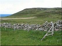NM3348 : Near Treshnish Point by Eileen Henderson