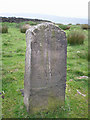 SE0215 : Boundary stone on Deanhead Moor by John Illingworth
