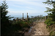 NR6014 : Gate on the Kintyre Way. by Steve Partridge