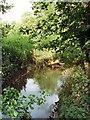 SP6239 : Stream near Biddlesden Park by Duncan Lilly