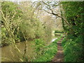 SO9260 : Tow path north of Dunhampstead Tunnel by Trevor Rickard