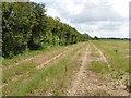 SP7717 : Field at Fleet Marston Farm by David Hawgood