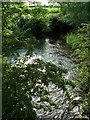 NY3360 : Powburgh Beck by Rose and Trev Clough