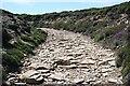 SW6949 : The Coast Path over Mulgram Hill by Tony Atkin