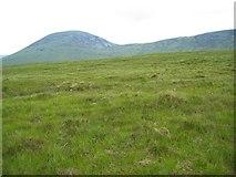 NH1154 : Mile Dubh by John Allan