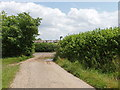 TL0045 : John Bunyan Trail enters Wootton by David Hawgood