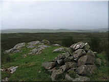NS3166 : Cairn on Smeath Hill by wfmillar