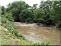 SE3109 : The River Dearne the day after flooding. by John Fielding