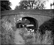 ST7666 : Waterbus at Candy's Bridge, Kennet and Avon Canal by Dr Neil Clifton