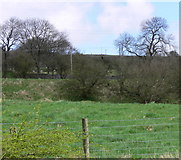 SO0609 : Upland Field Scene With Dry Stone walls by Bonelli