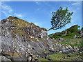 NM7609 : Roche moutonnée by Barry Deakin