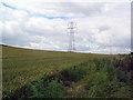 TL1172 : Pylons in wheat field by Les Harvey