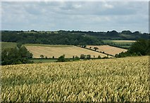 ST7258 : 2007 : Farmland between Wellow and Dunkerton by Maurice Pullin