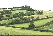 ST6759 : Near Timsbury by Maurice Pullin