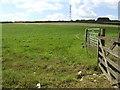 SX1761 : Electrified grazing land by Jonathan Billinger