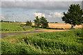TL3184 : Road over to Dovehouse Farm off Hollow Lane by Shaun Ferguson
