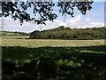 SX2695 : Near Brendonmoor Plantation by Derek Harper
